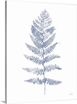 Fern Print II Blue No Shiplap