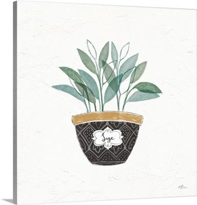 Fine Herbs VII