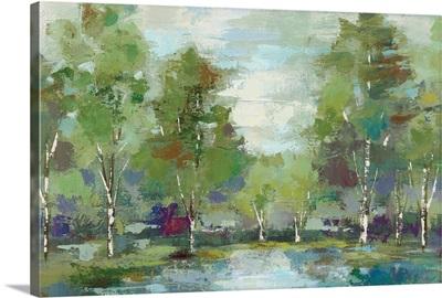 Forest at Dawn Crop