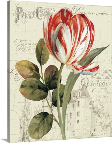 garden view ii red tulip wall art canvas prints framed prints