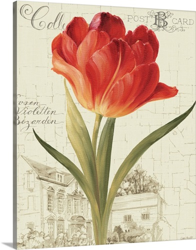 garden view iii red tulip wall art canvas prints framed prints
