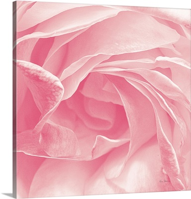 Georgia Pink