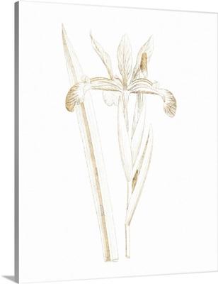 Gilded Botanical III