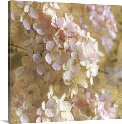Gilded Hydrangea I