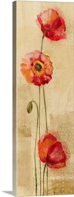 Golden Poppies II
