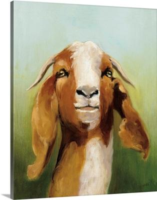 Got Your Goat v2