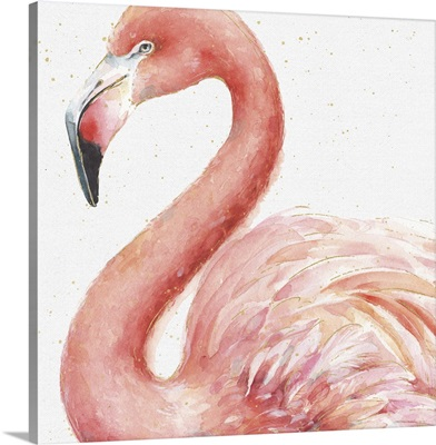 Gracefully Pink III
