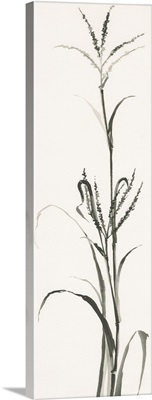 Gray Grasses IV