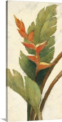 Halconia Blossom