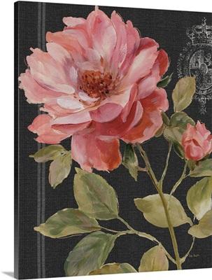 Harmonious Rose Black