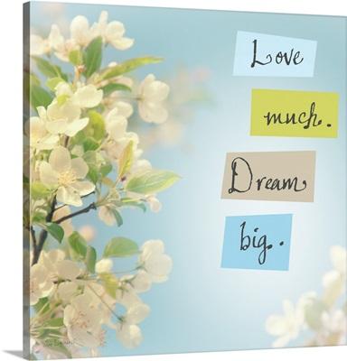 Love Much Dream Big