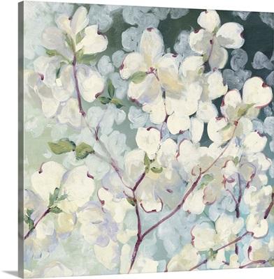 Magnolia Delight
