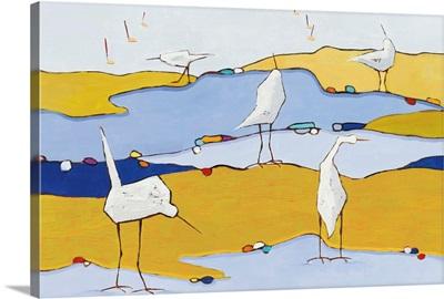 Marsh Egrets VI