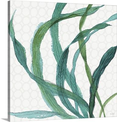 Mixed Greens XXIII