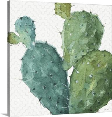 Mixed Greens XXXVI
