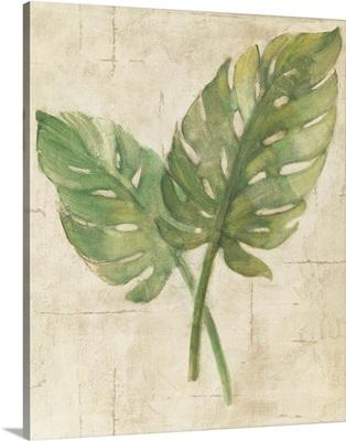 Monstera Leaves Neutral Crop