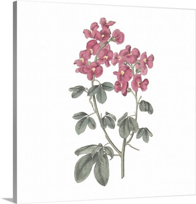 Monument Etching Tile Flowers IV