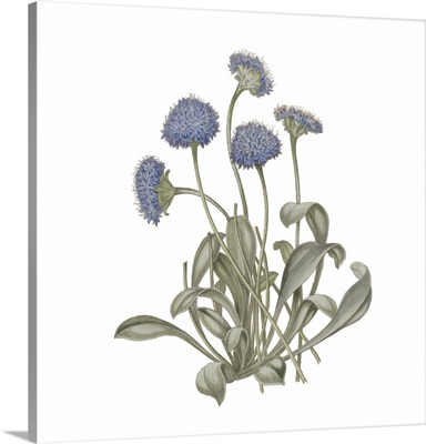 Monument Etching Tile Flowers IX