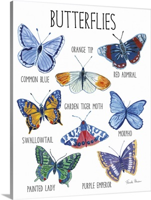 Nature Chart II