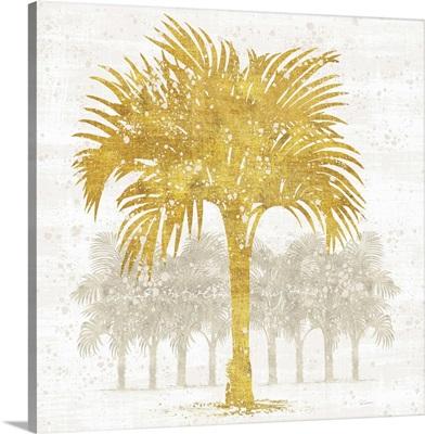 Palm Coast IV