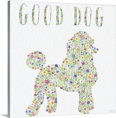 Poodle - Good Dog