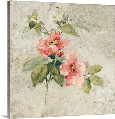 Provence Rose I Red and Neutral