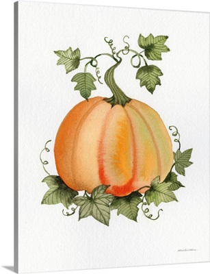Pumpkin and Vines II