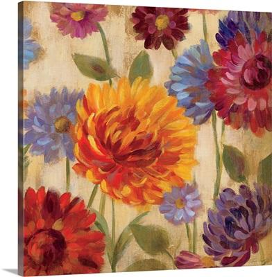 Rainbow Dahlias Crop III