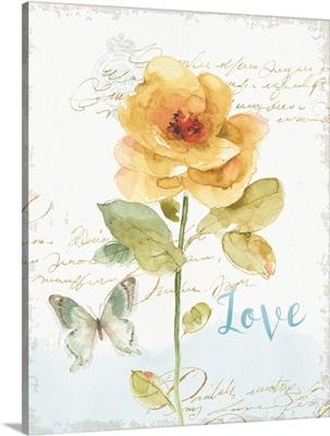 Rainbow Seeds Floral VIII Love