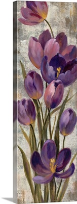 Royal Purple Tulips I Crop