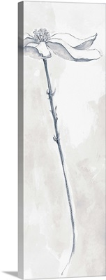 Solitary Dogwood V Gray