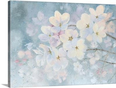Splendid Bloom