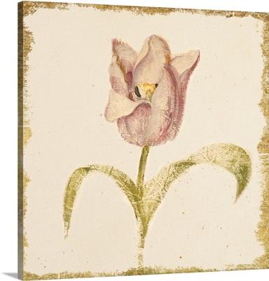 Vintage Blue Parrot Tulip Crop