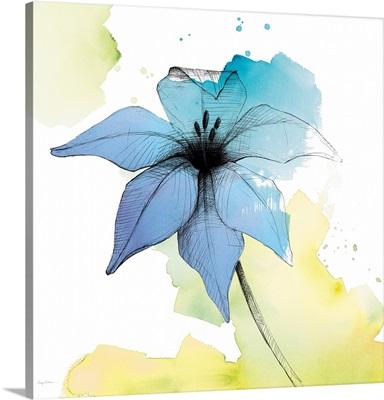 Watercolor Graphite Flower V