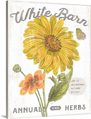 White Barn Flowers I