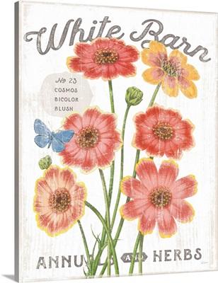 White Barn Flowers III