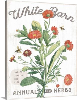 White Barn Flowers IV