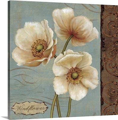 Windflower II