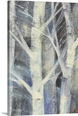 Winter Birches II