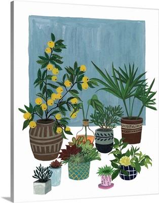 A Portrait of Plants II