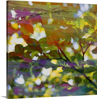 Abstract Leaf Study II