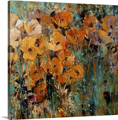 Amber Poppy Field II
