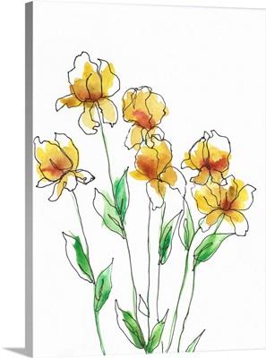 Amber Tulips II
