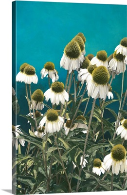 Among The Wildflowers I