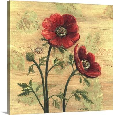 Anemone on Wood