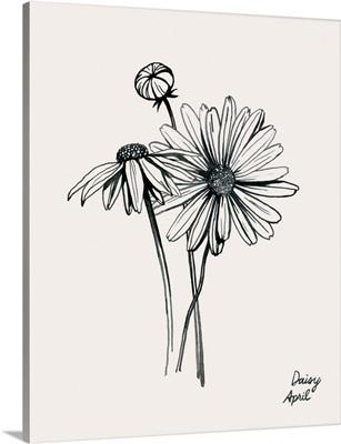 Annual Flowers IV
