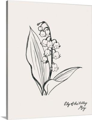 Annual Flowers V