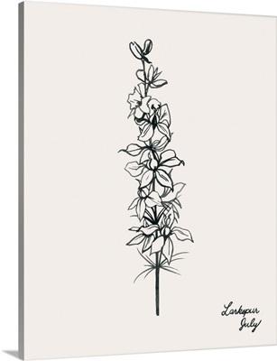 Annual Flowers VII