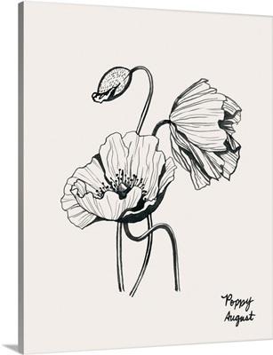 Annual Flowers VIII