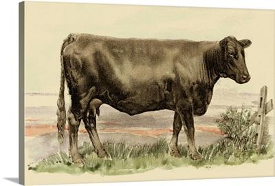 Antique Cow II